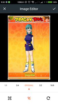 HD Bulma Wallpaper poster