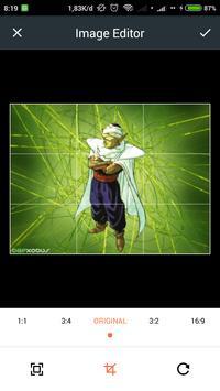 HD Piccolo Wallpaper poster