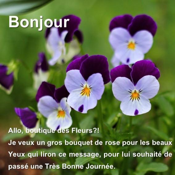 Sms Pour Dire Bonjour For Android Apk Download