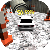 Simulator Pro: Crazy Racing icon