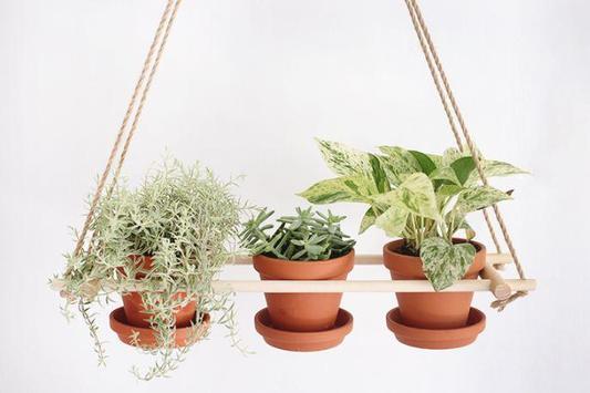 Hanging Flower Pots ideas screenshot 6