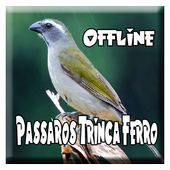 Passaros Trinca Ferro icon