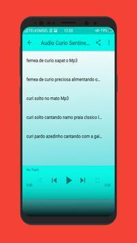 Curio Sentinela Femea Neto screenshot 2