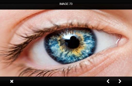 Hazel Eyes Makeup apk screenshot