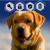 Labrador Dog Retriever Puppy Wallpaper Screen Lock icon