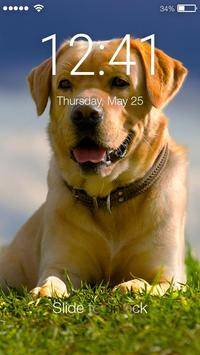 Labrador Dog Retriever Puppy Wallpaper Screen Lock poster