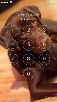 Labrador Dog Retriever Puppy Wallpaper Screen Lock screenshot 1