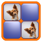 Match The Pets icon
