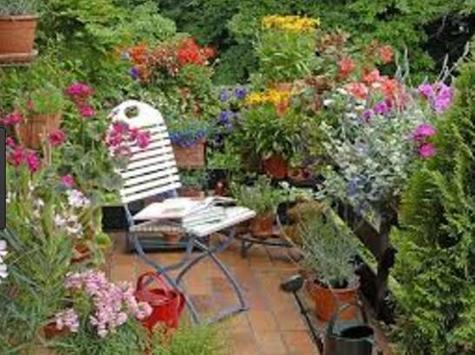 Home Garden Design screenshot 7