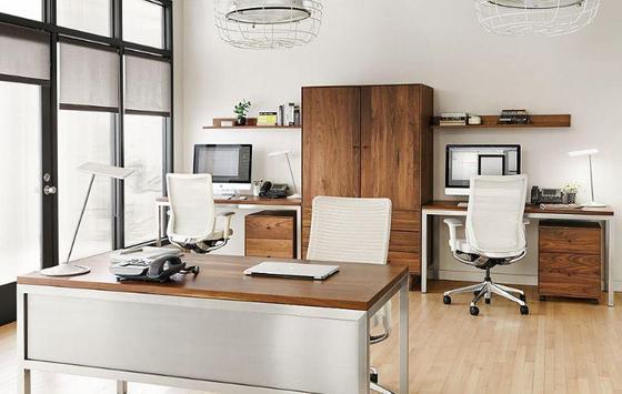 Home Office Ideas screenshot 3