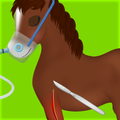 Horse Surgery Game