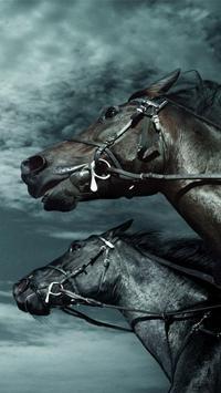 Horse Pictures Live Wallpaper screenshot 4