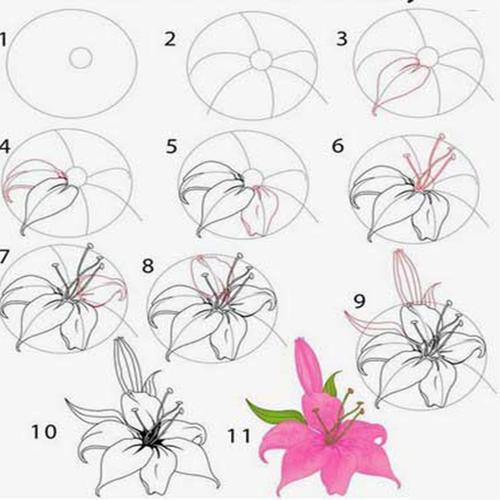 Cara Menggambar Bunga For Android Apk Download