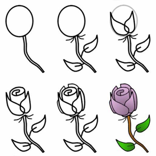 Como Desenhar Rosa Para Android Apk Baixar