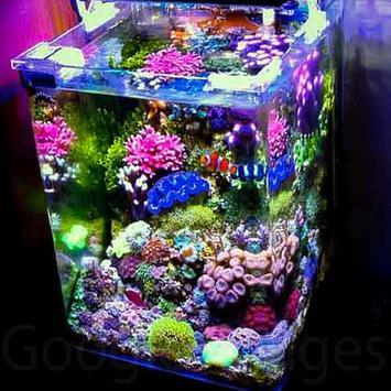 Aquarium Decoration Idea screenshot 4