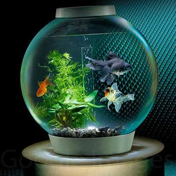 Aquarium Decoration Idea screenshot 3