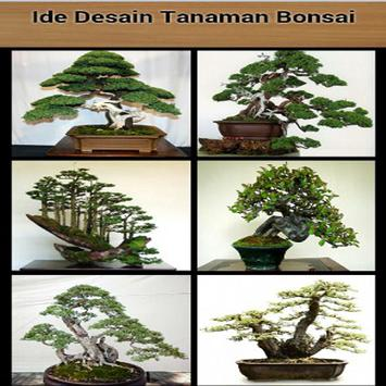 Bonsai Plant Design Idea apk screenshot