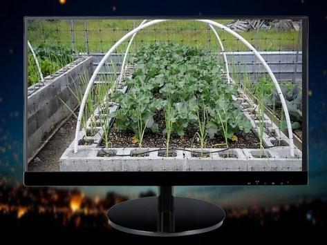 Minimalist Vegetable Garden Ideas screenshot 5