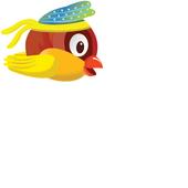 Birdy Pro icon