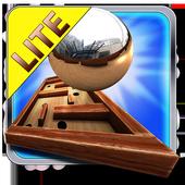 Crazy Labyrinth 3D - Lite icon