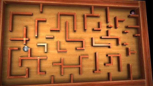 Crazy Labyrinth 3D - Lite screenshot 14