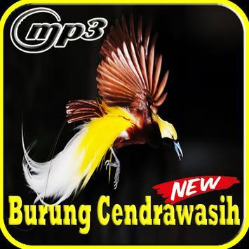 Kicau Burung Cendrawasih Mp3 poster