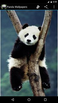 Panda Wallpapers apk screenshot