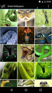 Snake Wallpapers apk screenshot