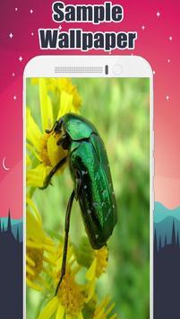 Insect Wallpaper screenshot 3