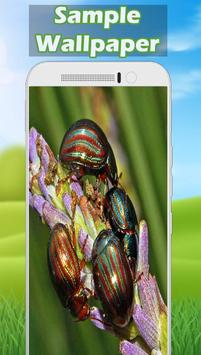 Insect Wallpaper screenshot 1