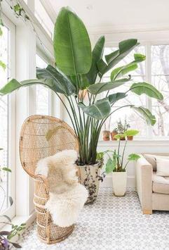 Interior Plant ideas poster