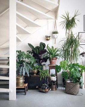 Interior Plant ideas screenshot 4