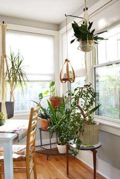 Interior Plant ideas screenshot 5