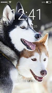 Husky Dogs AppLock poster