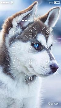 Husky Dogs AppLock apk screenshot