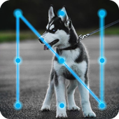 Husky Puppy Dog Lock App icon