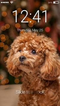 Poodle Dogy Style  AppLock poster