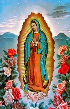 MI Guadalupe poster