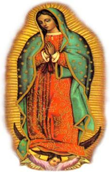 Nuestra Santa Patrona apk screenshot