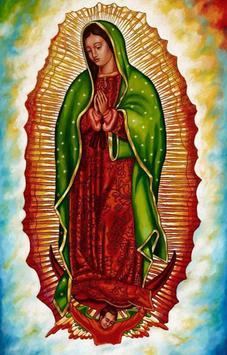 Guadalupe de mi Amor poster
