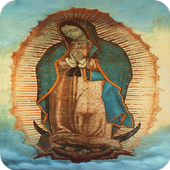 Virgen Guadalupe icon