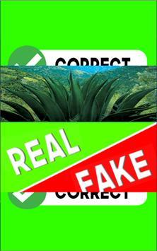 Real or Fake screenshot 2
