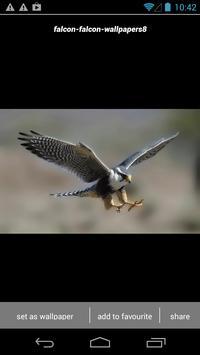 Falcon Wallpapers screenshot 4