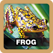 Frog Sound Ringtone icon