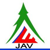 JAV Property icon