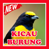 Kicau Burung Terbaru Lengkap icon