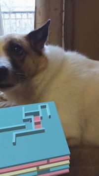 Maze AR poster