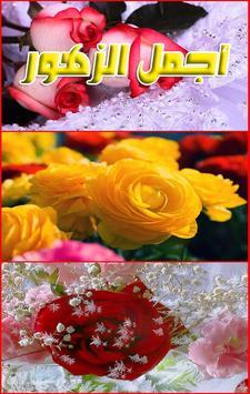 خلفيات أجمل الزهور بدون انترنت apk screenshot