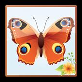 Butterfly Screen Lock icon