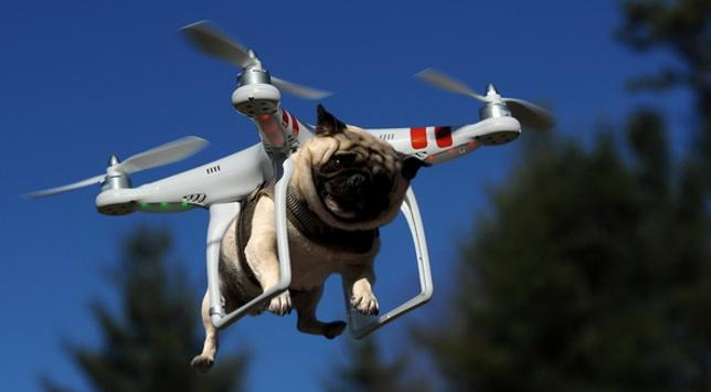 Drone screenshot 2
